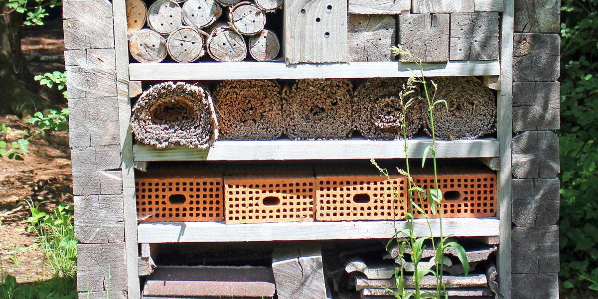 insektenhotels warum sie wichtig f r die natur sind und noch wichtiger f r wildbienen honig. Black Bedroom Furniture Sets. Home Design Ideas