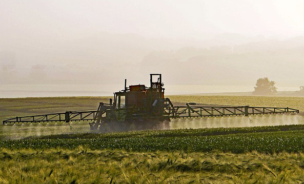Chemie in der Landwirtschaft und Monokulturen