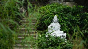 Hanf wurde einst in China für vieles genutzt.