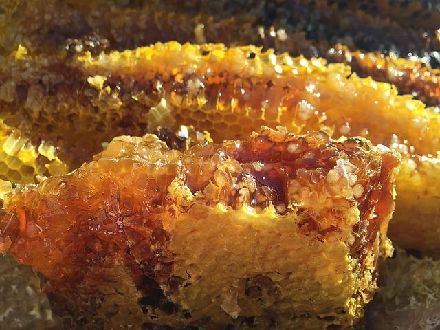 roher Honig direkt aus dem Bienenstock.