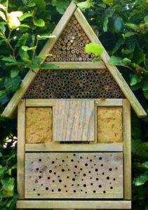 Wildbienen müssen geschützt werden