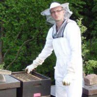 Schwarzwald Honig online kaufen
